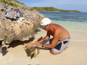 Conch cleaning on the beach